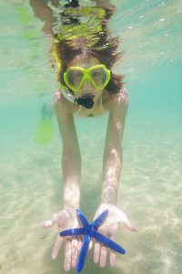 snorkeling woman holding a blue sea star
